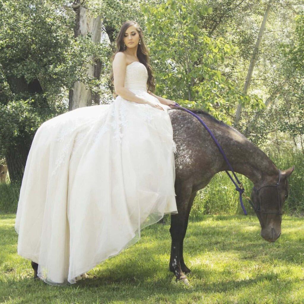 horse bridal